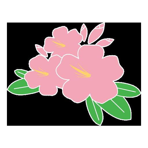 お花のギフトに、[手書きの絵や、言葉を添えて]絵てがみレッスン初めました。体験レッスン募集中‼️